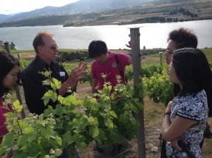 Key Opinion Leaders tour from China on the vineyard
